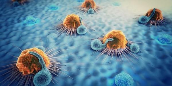 Inmunidad antiinfecciosa